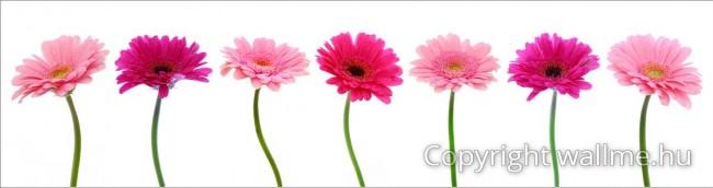 Letisztult kép, fehér hátteres virágszálakkal