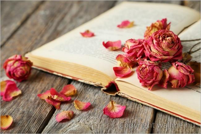 Romantika, költészet, szerelem...