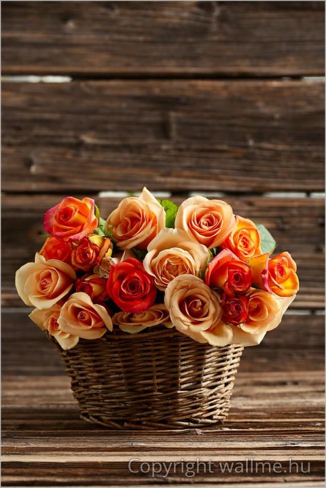 Vidéki hangulatú rózsás fotó