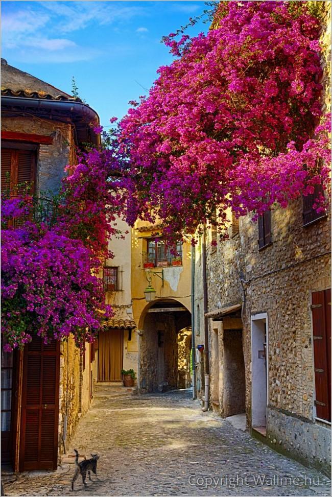 Varázslatos utcakép egy eszményi francia kisvárosból.