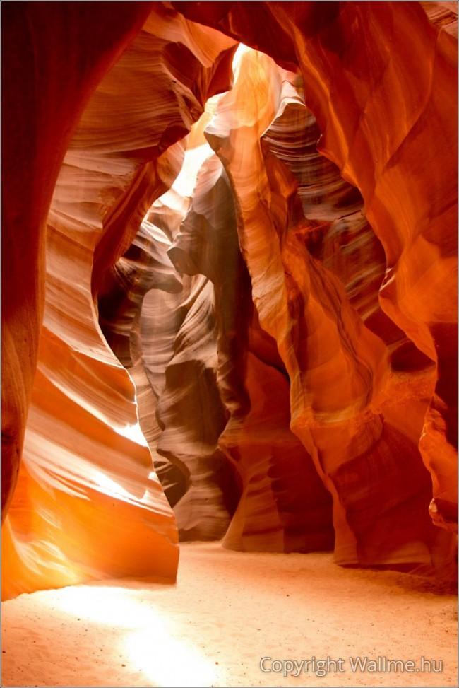 Minimalista stílusú kép absztrakt természeti formákkal