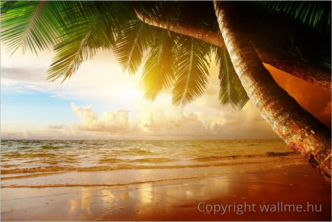 Karibi tengerpart fotó