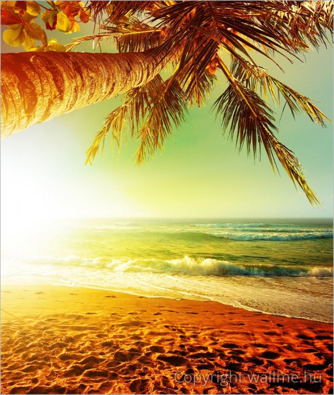 Karibi naplemente poszter