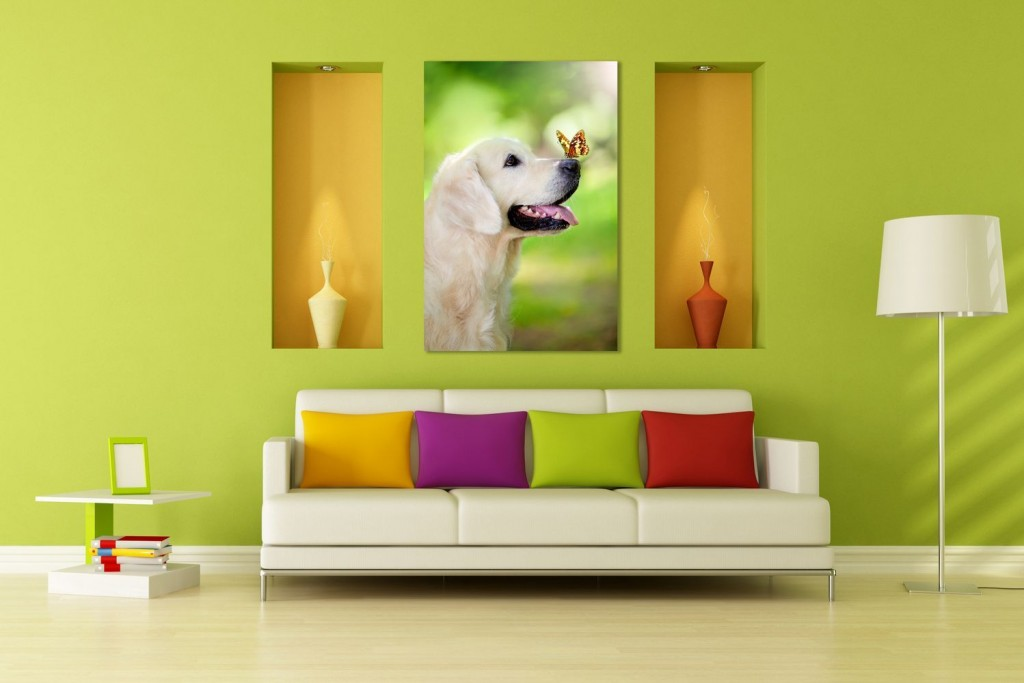WMPG0036-allatok-kutya-pillangoval-szoba