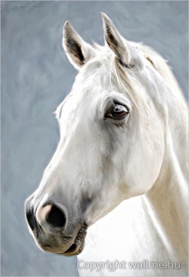 Fehér Ló Portré