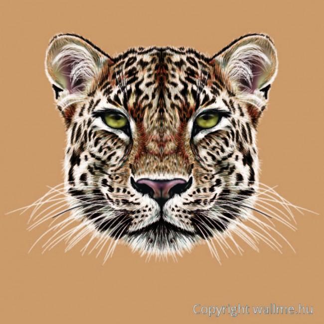 leopard_portre_II