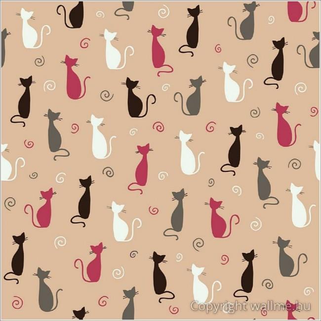 Macskák tapéta